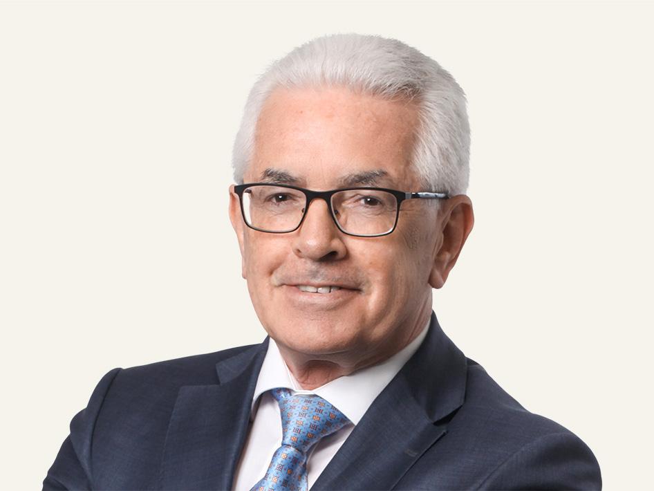 Fürstl. Rat David Vogt